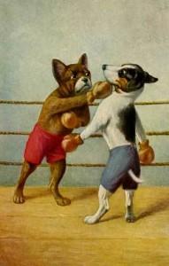 BoxingDogs