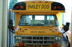 The Smiley Dog bus was used for shows and Pupperware parties