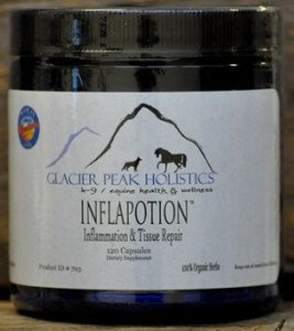 Inflapotion has noticeably reduced Ginger's discomfort within 2 weeks